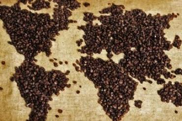 Cách phân biệt, nhận định về hương vị - thể chất và cảm nhận về phẩm chất thơm ngon của tách cà phê
