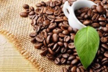 Trong tách cà phê nguyên chất của bạn có gì?