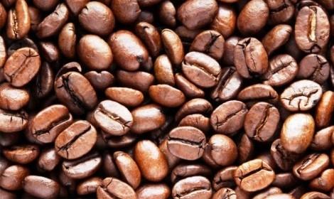 Cà phê chồn nguyên chất