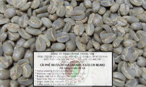 Arabica bourbon green bean