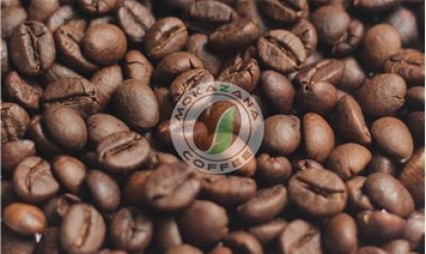 Light roasted Robusta bean
