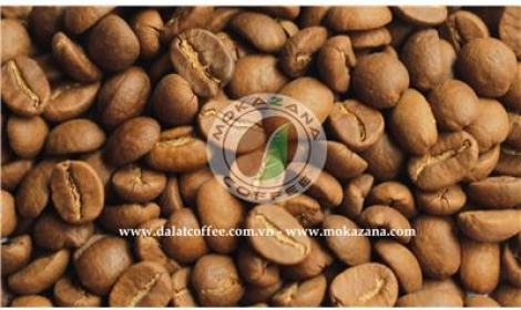 Light roasted Arabica bean
