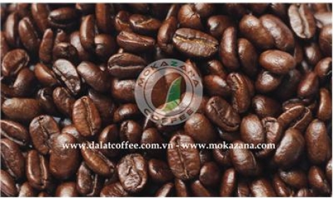 Medium roasted Moka beans