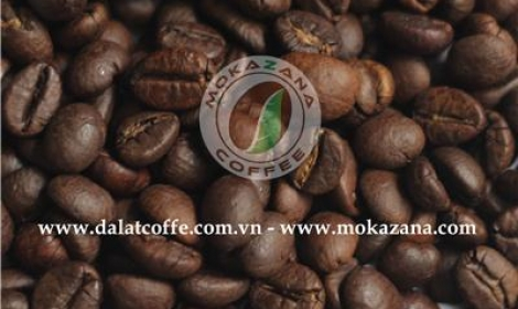 Medium roasted Robusta bean
