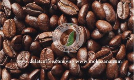 Medium roasted Arabica