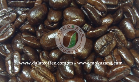 Dark roasted Moka bean